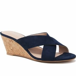 NIB Charles David Navy Grady Suede Wedge